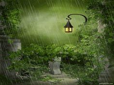 rain gif -