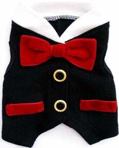Formal #Wedding #Vest for #dogs. #chaleco de #boda para perritos mimados y consentidos. #Elegancia. www.poppyscornershop.com