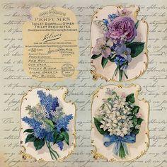 Vintage Flower Labels