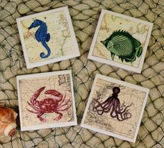 Coastal Chic Vintage Sea Creature Ceramic Tile Coaster Set