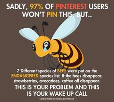 Do your part to save the Bees. Not a meme but this is very important and this is my most popular board. SAVE THE BEES!