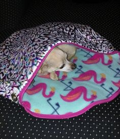 Puppy Pouch Dog Bed For The Little Diva Dogs In Your Life~Converts From/To - Bed/Pouch Safely and Easily by ImNotOldImVintaged on Etsy .....You will never get him / her out of this little burrow bed, once they go in! They LOVE them. Check out all the different designs and colors.