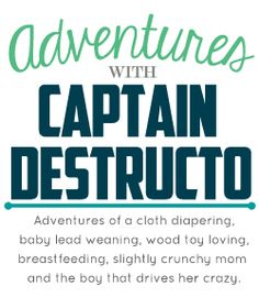Adventures of Captain Destructo : What I Would Put on a Cloth Diaper Registry (Also a Giveaway) #blessingway @diapershops