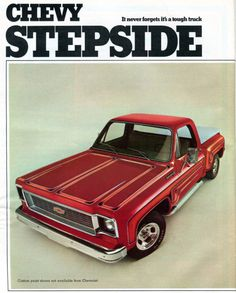 1974 Chevrolet Stepside Pickup Truck