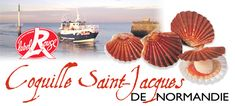 Coquille St. Jacques Normandie Label Rouge