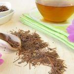 Liečivý čaj lapacho: Jeho skvelé účinky jednoducho musíš poznať!