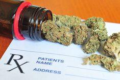 Order weed online uk Buy Cannabis Online, Buy Weed Online, Online Buying, Store Online, Cannabis Oil, Medical Cannabis, Thc Oil, Cannabis Plant, Cannabis Edibles