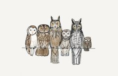 Bird Owl Print Digital Watercolour and Ink Illustration Print 6x4 of A Bundle of Owls gift in vintage colours. £4.50, via Etsy.