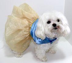 VENTA perro vestido de burbuja mediana perro por whirlydogsupplies