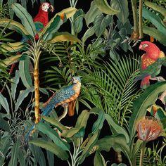 Parrots of Brasil Anthracite Wallpaper Swatch - Sample