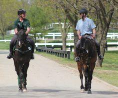 Austin O'Connor (IRE) & Andrew Nicholson (NZL): Rolex Kentucky 3DE 2013
