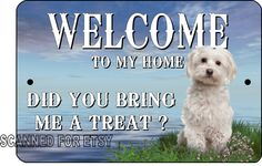 Maltese Sign Aluminum Dog or Puppy Welcome by ImageDeSignStudio