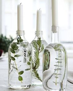 Handmade Home Decor Beautiful table decoration. Decorate glass bottles with aquatic plants. Easy Home Decor, Handmade Home Decor, Cheap Home Decor, Winter Home Decor, Home Goods Decor, Classic Home Decor, Handmade Decorations, Fall Decor, Do It Yourself Decoration
