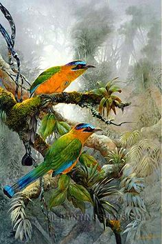 "Large Hand Painted Wholesale Oil Paintings Reproduction African Animal Bird, Size: 24"" x 36"", $117. Url: http://www.oilpaintingshops.com/large-hand-painted-wholesale-oil-paintings-reproduction-african-animal-bird-2757.html"