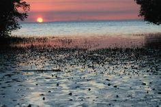 Sunset Inhaca Island, Mozambique