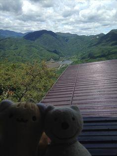 クマ散歩:荒川ダムで品行方正なクマ黄昏る The Bear got lost in thought around Arakawa Dam!♪☆(^O^)/  #黄昏る#品行方正