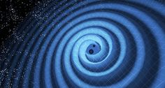 RIPPLE SIGHTING The cosmic dance of two black holes warped spacetime as the pair spiraled inward and merged, creating gravitational waves (illustrated). LIGO detected these ripples, produced by black holes eight and 14 times the mass of the sun, on December 26, 2015. ~~ T. Pyle/LIGO