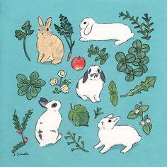 Rabbit Drawing, Rabbit Art, Bunny Art, Cute Bunny, Rabbit Illustration, Illustration Art, Bunny Tattoos, Bunny Painting, Cute Drawings