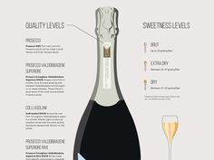 Learn more about this fascinating sparkler including where Prosecco wine comes from, how to choose a bottle, it's many styles, pairing tips and more. Wine Folly, Wine Guide, Expensive Wine, Wine Wednesday, Growing Grapes, Wine Delivery, In Vino Veritas, Sparkling Wine, Fine Wine