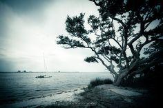black and white beach catamaran beach large by photographybyVena, $30.00