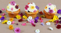 DIY Gifts for Mother's Day ~ Sugared Flowers    Handmade candied flowers will wow all the important women in your life. Not only are these sweet, elegant, and edible blossoms beautiful and delicious, but they're also surprisingly easy to make. Use them as decorations for an unforgettable Mother's Day dessert.