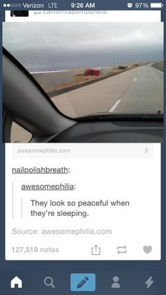 Shhhhh… they're sleeping:   32 Of The Greatest Things That Have Ever Happened On Tumblr Im actually loling