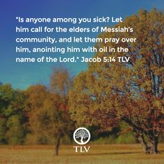 """Is anyone among you sick? Let him call for the elders of Messiah's community..."" Jacob (James) 5:14 TLV"