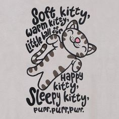 4 Different Versions of The Big Bang Theory Soft Kitty