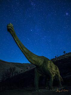 20131207 Nocturnas prehistóricas_033