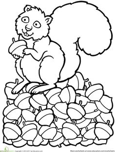 Worksheets: Color the Squirrel
