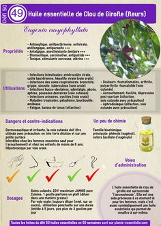 Huile essentielle Cannelle de Ceylan feuilles