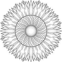 "This is ""Sunflower Bloom"", a free printable coloring page from mondaymandala.com https://mondaymandala.com/m/sunflower-bloom?utm_campaign=sendible-pinterest&utm_medium=social&utm_source=pinterest&utm_content=sunflower-bloom"
