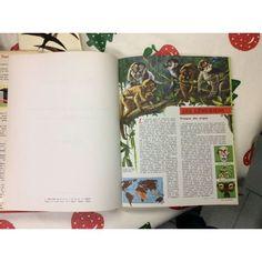 Encyclopédie Tout L