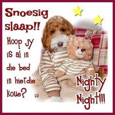 Good Morning Good Night, Good Night Quotes, Goeie Nag, Sleep Tight, Afrikaans, Birthday Cards, Teddy Bear, Night Night, Winter