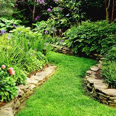 Creating visual lines in your garden