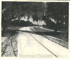 1954 Scene of New Highway, Ascension Parish, Louisiana Prairieville, Louisiana Airline Highway US 61 Gonzales Louisiana, Ascension Parish, Old Images, Art Reference, Scene, History, Living Room, Historia, Stage