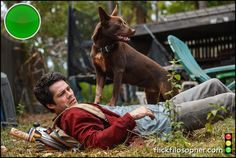 This pleasantly silly-sad apocalypse, melancholy with a dash of optimism, smashes clichés and finds fresh angles on the familiar. Dylan O'Brien has a self-deprecating charm; there's a great dog, too. Sad Movies, I Movie, Jessica Henwick, Michael Rooker, Film Review, Independent Films, Dylan O'brien, End Of The World, Melancholy