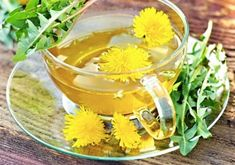 All About Dandelion: Recipes, Harvesting Tips and More - Food and Recipes - Mother Earth Living Dandelion Benefits, Dandelion Root Tea, Healing Herbs, Medicinal Herbs, Natural Health Remedies, Herbal Remedies, Dandelion Recipes, Easy Drink Recipes, Medicinal Plants