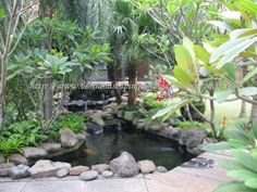 Landscape & Gardening Design and Construction for Houses, Cottages, Real Estate, Hotels, Offices