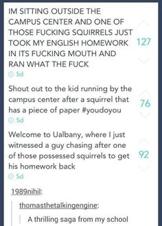 The homework-stealing squirrel saga Stupid Funny Memes, Funny Quotes, Hilarious, Funny Stuff, Random Stuff, Funny Things, It's Funny, Funny Tumblr Posts, Texts