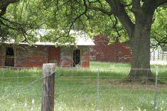 Barns - Katy, TX