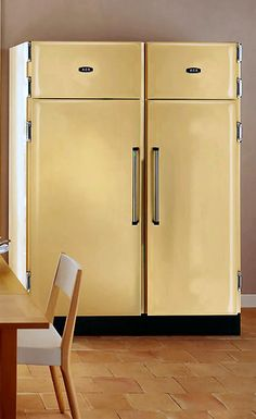 AGA Pantry Refrigerator and Freezer.  Very cool