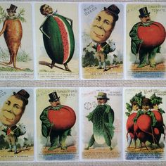 Who wouldn't enjoy using silly vegetable people stickers? These reproduction stickers are made from early 1900s seed packets. Wonderful for paper crafts of all kinds.