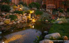 Backyard Pond with Lights and Seating Area