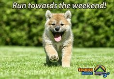 Run, run towards the weekend! It's Friday! #weekend #friday #travel #vacation