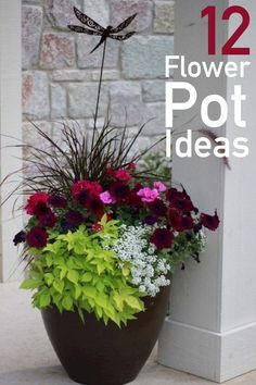 Explore stunning color combinations and practical planting advice with these 12 flower pot ideas for your front porch container gardening! Potted Plants Patio, Outdoor Plants, Container Flowers, Container Plants, Gemüseanbau In Kübeln, Outdoor Flowers, Outdoor Flower Planters, Container Gardening Vegetables, Annual Flowers