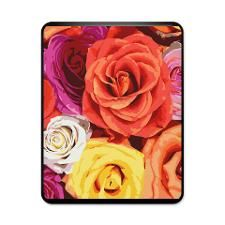 Multicolor Roses iPad Case. Click to see this design on other products.
