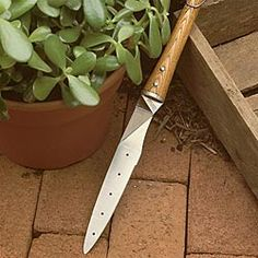 Attirant This Japanese Transplanting Tool Has A Thin Flexible Serrated Blade For  Cutting Roots When Dividing Plants