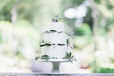 Eucalyptus and berry wedding cake | Bowtie and Belle Photography | see more on: http://burnettsboards.com/2015/12/grecian-garden-wedding-inspiration/