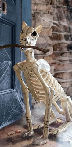 Our wickedly detailed skeleton dogs are begging to stay at your house. Massive Spike arrives from the skeleton shelter in a sitting position.